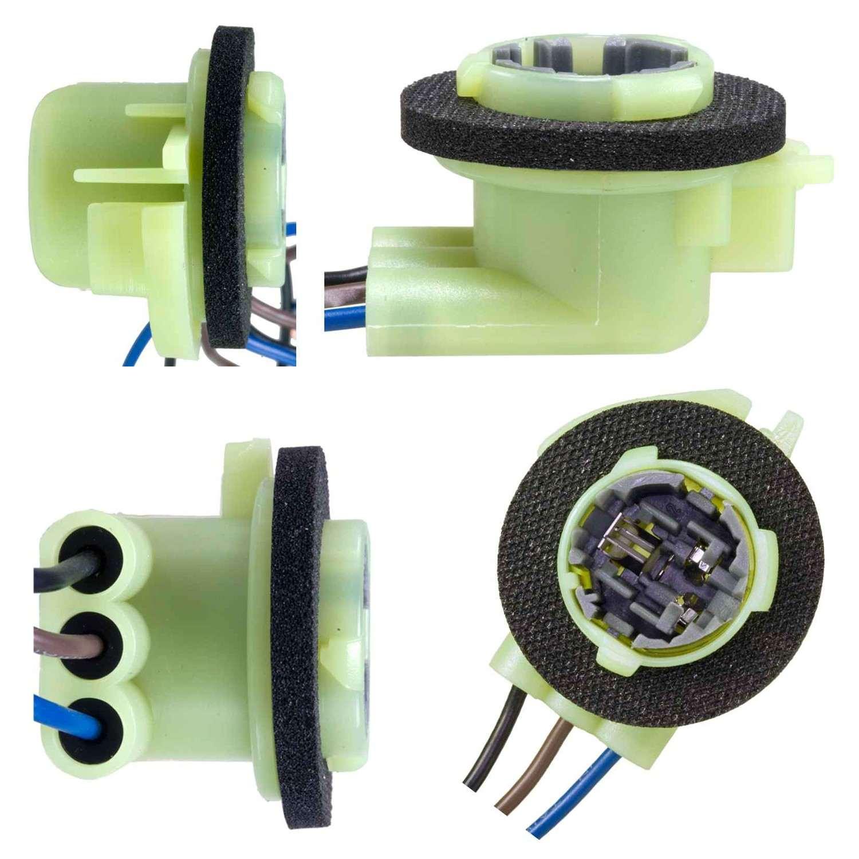 AIRTEX ENG. MGMT. SYSTEMS - Parking Light Bulb Socket - AEM 6S1084