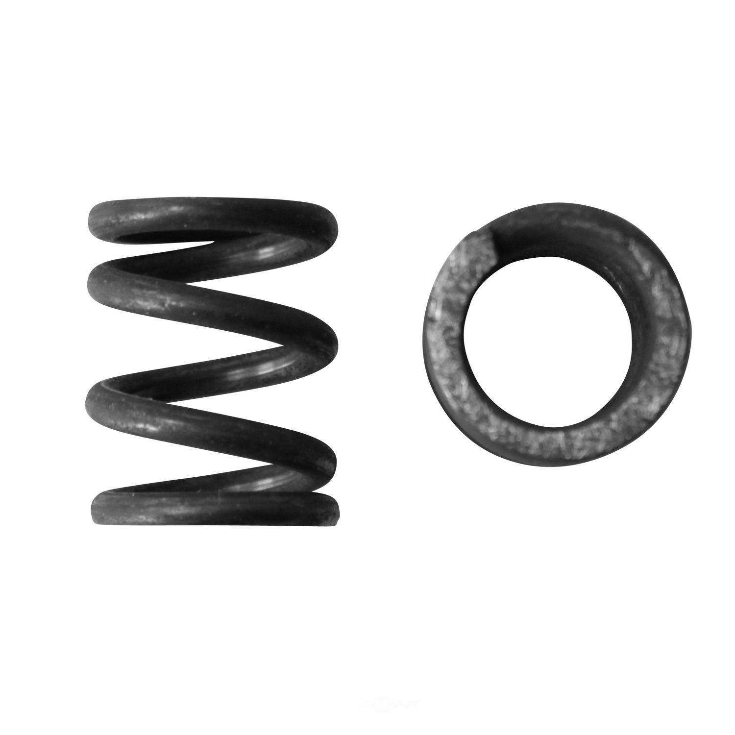 AP EXHAUST W/FEDERAL CONVERTER - Exhaust Spring - APF F5309