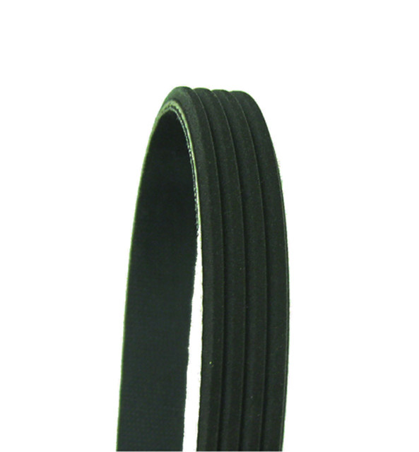 AUTO EXTRA SERP AND V BELTS - Serpentine Belt - AXV 445K4