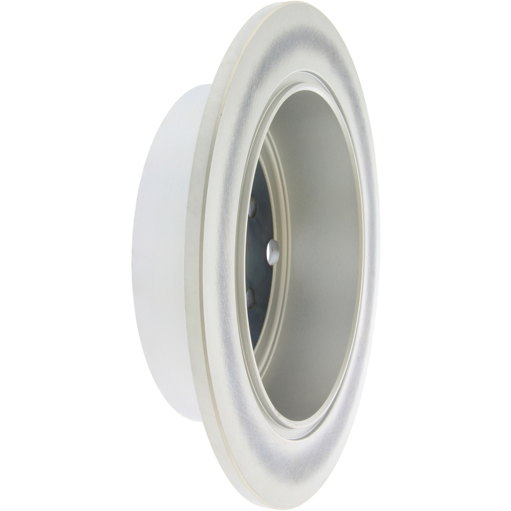 CENTRIC PARTS - Centric GCX Disc Brake Rotors - Partial Coating (Rear) - CEC 320.47029