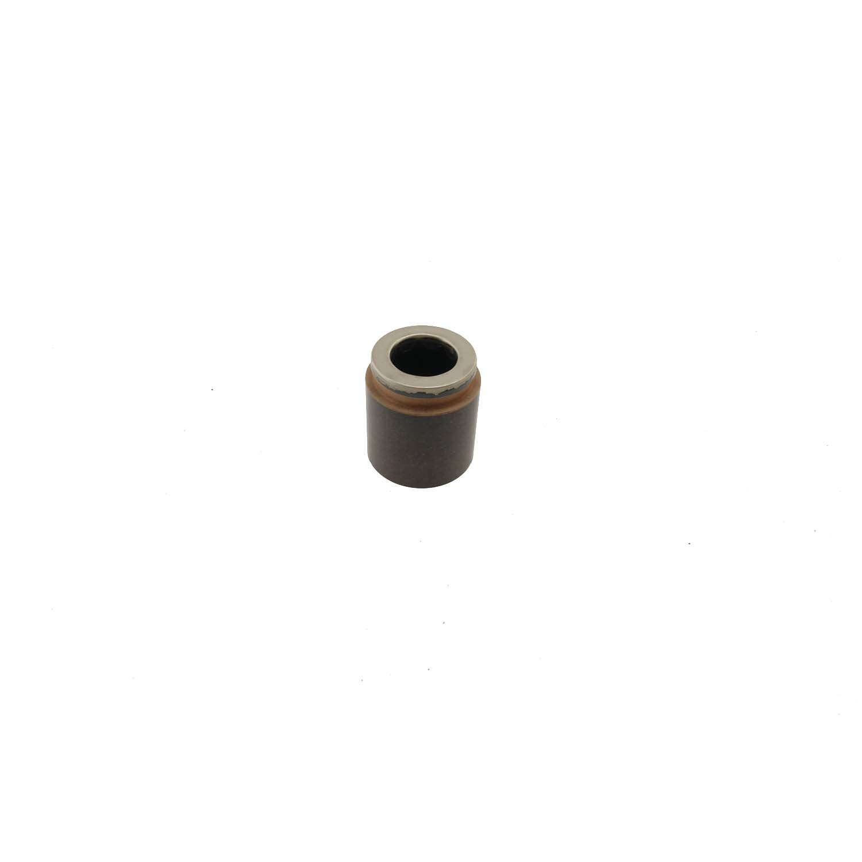 CARLSON QUALITY BRAKE PARTS - Disc Brake Caliper Piston (Rear) - CRL 7901