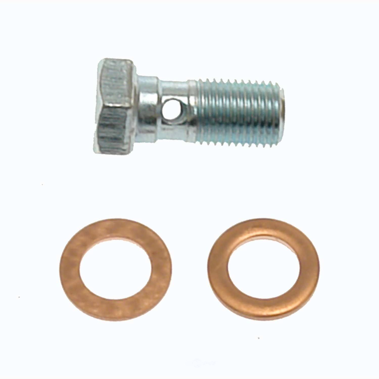 CARLSON QUALITY BRAKE PARTS - Brake Hydraulic Banjo Bolt (Rear) - CRL H9466-2