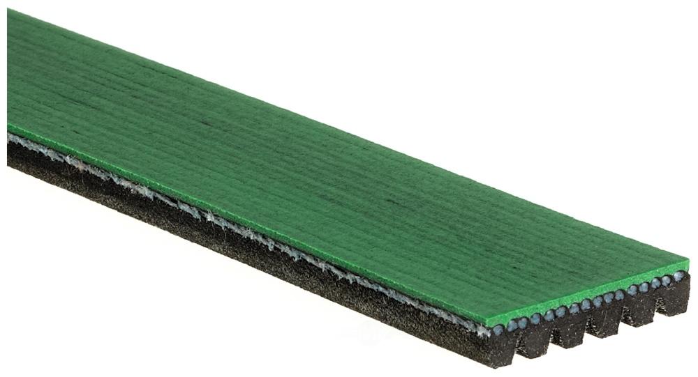 ACDELCO SPECIALTY - Heavy Duty Serpentine Belt - DCE K061360HD