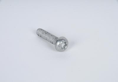 ACDELCO GM ORIGINAL EQUIPMENT - Bolt - DCB 19179124
