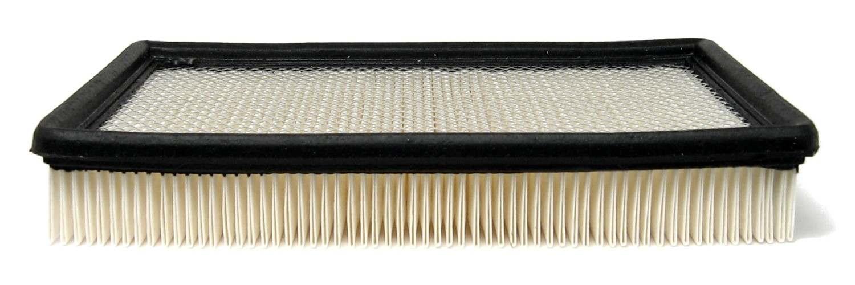 ACDELCO GM ORIGINAL EQUIPMENT - Air Filter - DCB A1096C
