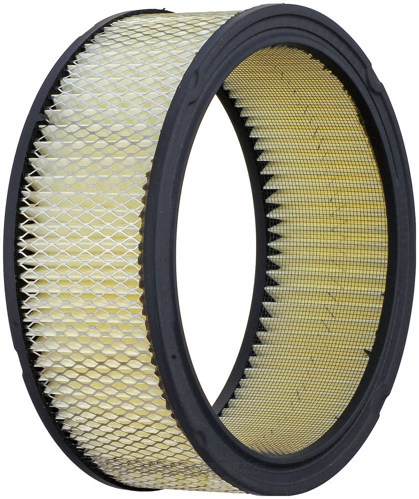 ACDELCO GOLD/PROFESSIONAL - Vapor Canister Filter - DCC A178CW