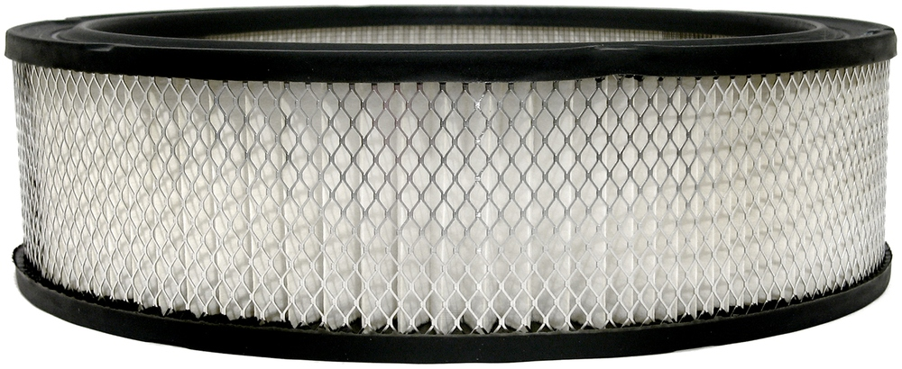 ACDELCO PROFESSIONAL - Air Filter - DCC A348C
