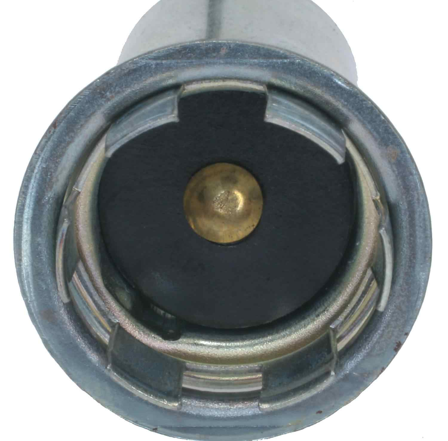 ACDELCO PROFESSIONAL - License Plate Light Socket - DCC LS281