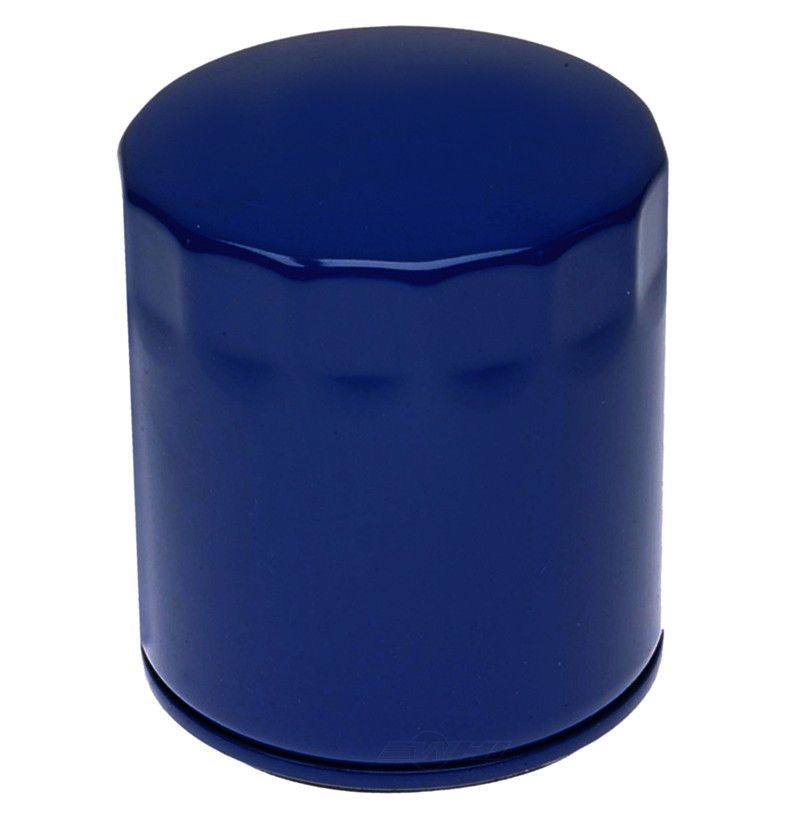 ACDELCO PROFESSIONAL - Engine Oil Filter - DCC PF53