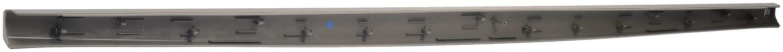 DORMAN OE SOLUTIONS - Tailgate Molding - DRE 925-607