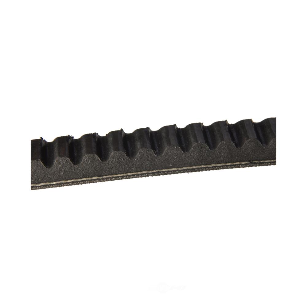 CONTINENTAL - V-belt - GOO 15356