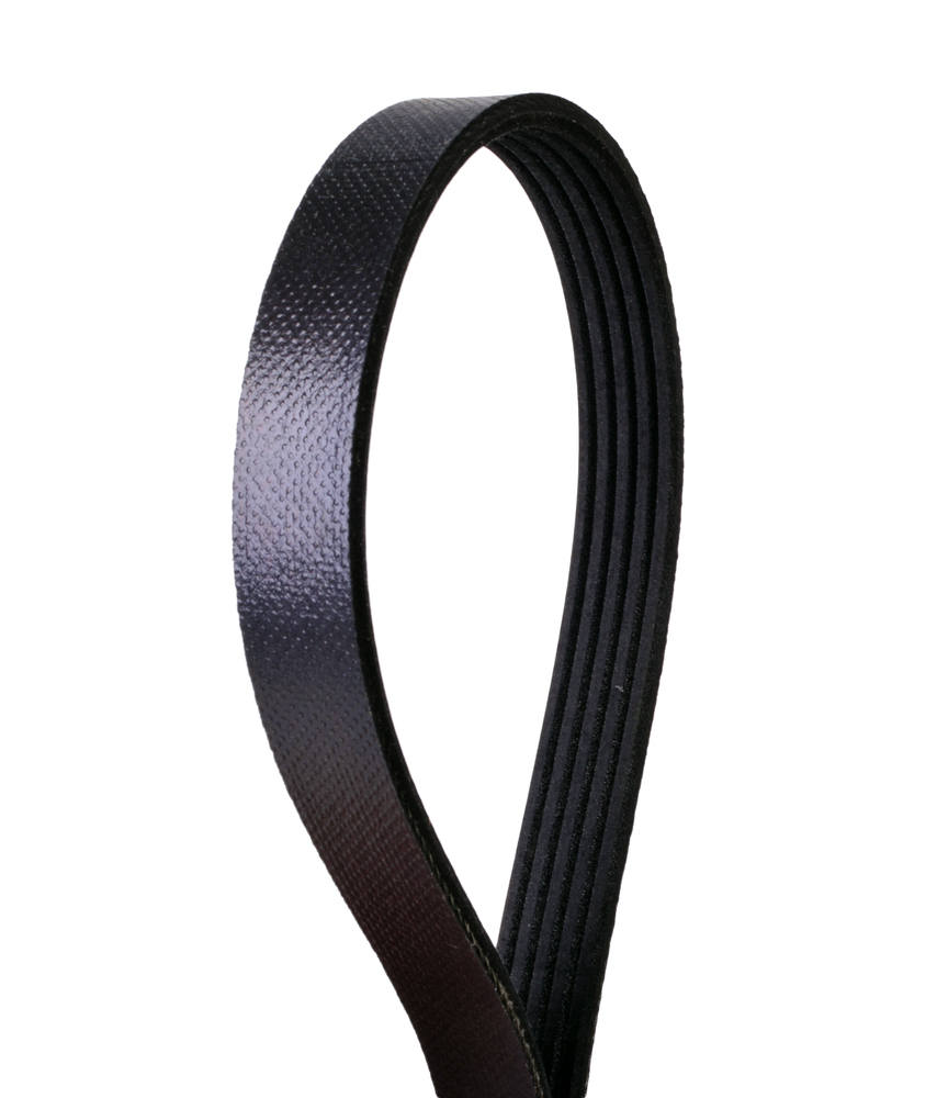 CONTINENTAL ELITE - Serpentine Belt (Air Conditioning) - GOO 4050360