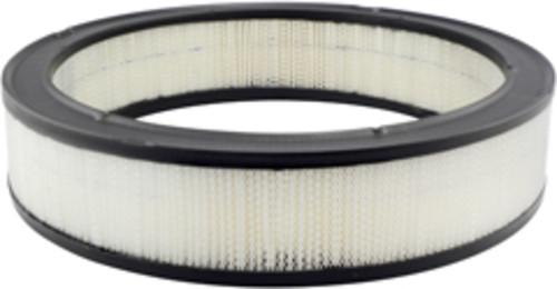 HASTINGS FILTERS - Air Filter - HAS AF110