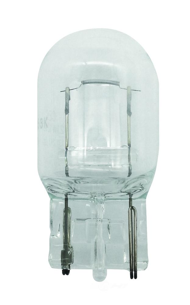 HELLA - Hella Back Up Light Bulb - HLA 7440