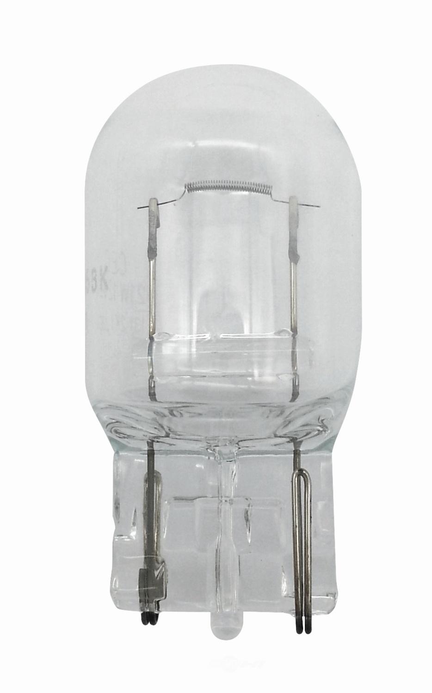 HELLA - Hella Tail Light Bulb - HLA 7440TB