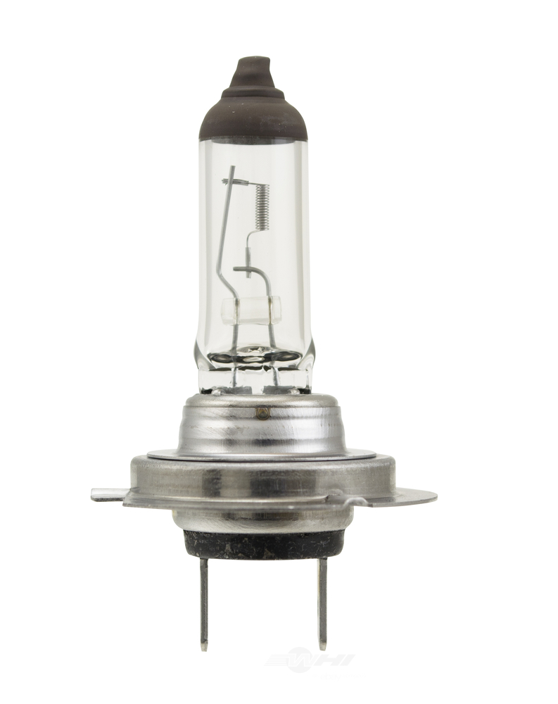 HELLA - Hella Cornering Light Bulb - HLA H7 70W