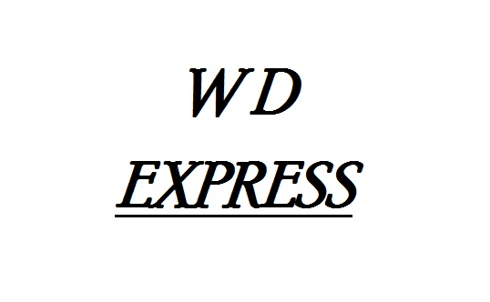 WD EXPRESS - Genuine Power Steering Hose - WDX 162 06128 001