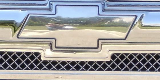 T-REX - Bumper Grille Insert Grille Emblem - REX 19275