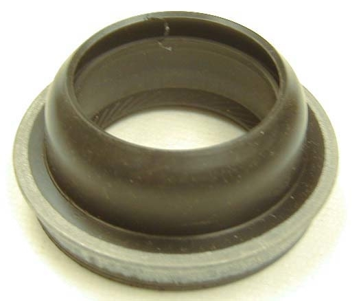 SKF (CHICAGO RAWHIDE) - Rear Seal-MT - SKF 15546