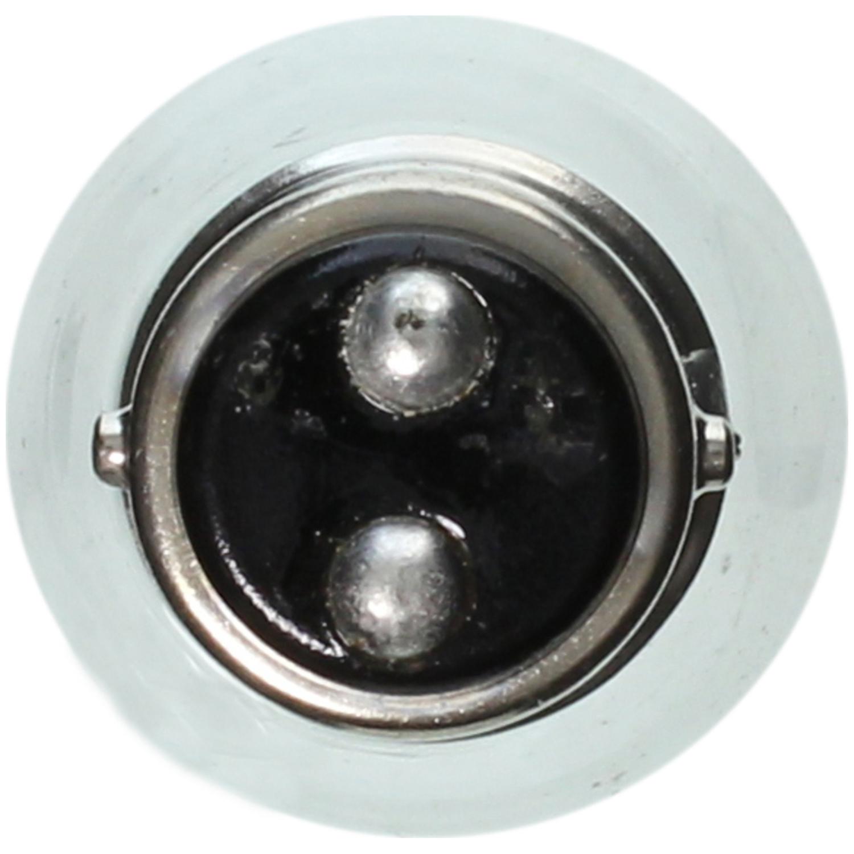 WAGNER LIGHTING - Turn Signal Light Bulb - WLP BP2057
