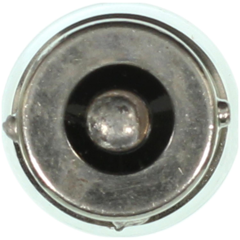 WAGNER LIGHTING - License Light Bulb - WLP BP67