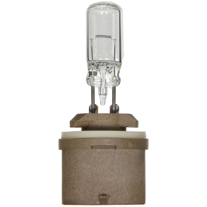 WAGNER LIGHTING - Turn Signal Light Bulb - WLP BP890