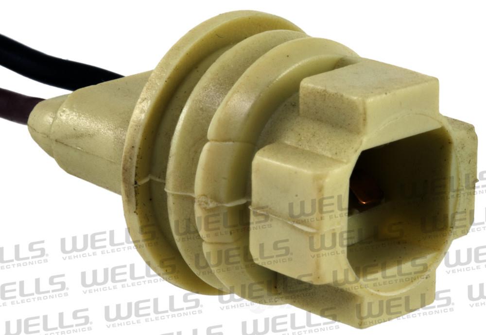 WVE BY NTK - Tail Light Socket - WVE 6S1065
